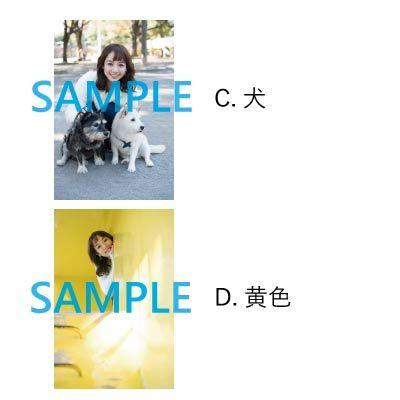 【Primavera】四切ワイド写真(2019年カレンダーショット)